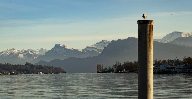 Luzern-see-bergen