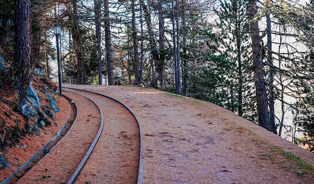Richtung Gornergrad, ein Wanderweg mit herbstlichen Nadeln am Boden.